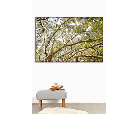 Quadro Save The Forest V | WestwingNow