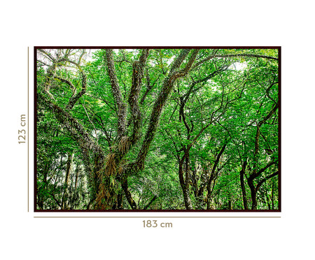 Quadro Save The Forest lV | WestwingNow