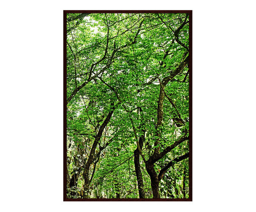 Quadro Save The Forest ll - Sergio Kovacevick, Verde | WestwingNow