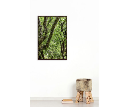 Quadro Save The Forest l | WestwingNow