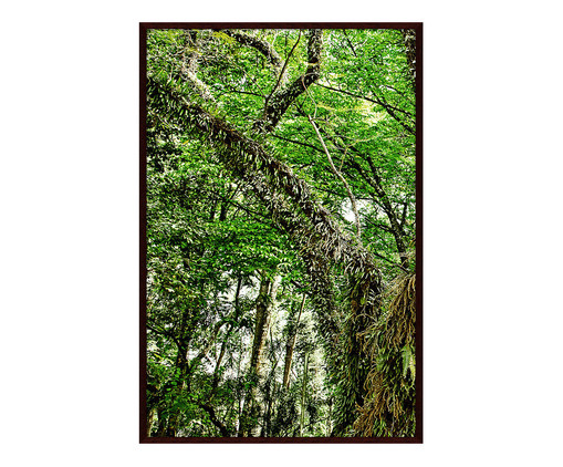 Quadro Save The Forest lll - Sergio Kovacevick, Verde | WestwingNow