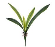 Planta Permanente Orquídea Real - Verde | WestwingNow