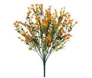 Planta Permanente Carinho de Mãe Laranja | WestwingNow