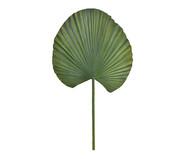 Planta Permanente Folha Palmeira Leque | WestwingNow