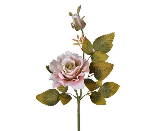 Planta Permanente Rosa e Botão Outono Rosa, Rosa   WestwingNow