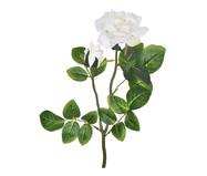 Planta Permanente Haste Rosa e Botão Creme | WestwingNow
