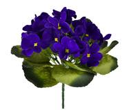 Planta Permanente Violeta Micropeach | WestwingNow