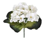Planta Permanente Violeta Micropeach - Creme | WestwingNow