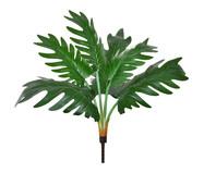 Planta Permanente Folhagem Philo - Verde | WestwingNow