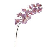 Planta Permanente Orquídea Diamante - Lavanda | WestwingNow