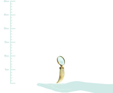 Lupa Decorativa Caiubi - Bege e dourado | WestwingNow