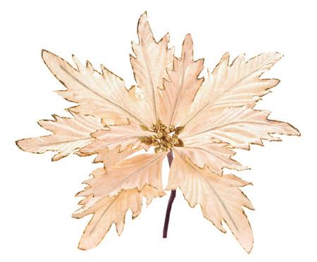 Planta Permanente Decorativa Jepiara -  35X35X35cm   WestwingNow