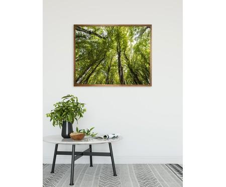 Quadro com Vidro Árvores - 90x70 | WestwingNow