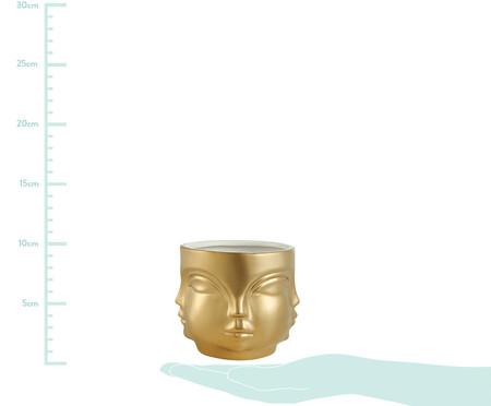 Cachepot Lela - Dourado | WestwingNow