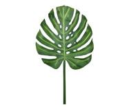 Planta Permanente Folha Costela de Adão | WestwingNow
