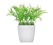 Planta Permanente Arranjo Capim - Verde | WestwingNow