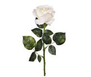 Planta Permanente Haste Rosa Colombiana Branco | WestwingNow