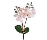 Planta Permanente Haste Orquídea - Branco | WestwingNow