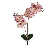Planta Permanente Haste Orquídea com Folhas  -Rosa | WestwingNow