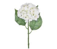 Planta Permanente Haste Hortensia - Creme | WestwingNow