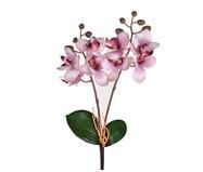 Planta Permanente Haste Orquídea Lavanda | WestwingNow
