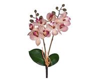 Planta Permanente Haste Orquídea - Rosa | WestwingNow