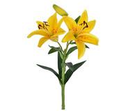 Planta Permanente Lírio - Amarelo | WestwingNow
