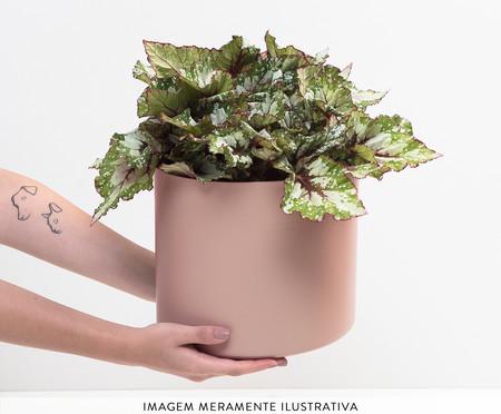 Mesa Guia para Plantas - Rosa | WestwingNow