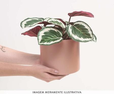 Cachepot para Plantas Rossi - Rosa | WestwingNow