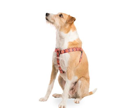 Peitoral para Cachorros Dubai - Vermelha | WestwingNow