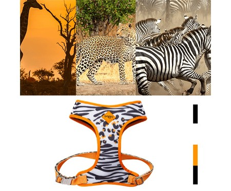 Peitoral Bold para Cachorros South Africa - Colorido | WestwingNow