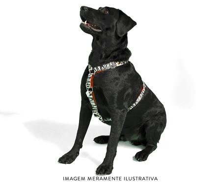 Peitoral Educativo H Slim para Cachorros South Africa - Colorido | WestwingNow