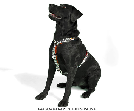 Peitoral Educativo H Slim para Cachorros South Africa - Colorido   WestwingNow
