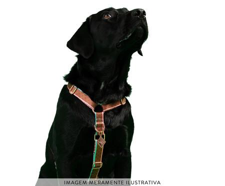 Peitoral Educativo H Slim para Cachorros Paris - Terracota   WestwingNow