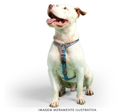 Peitoral Educativo H Slim para Cachorros Machu Picchu - Azul | WestwingNow