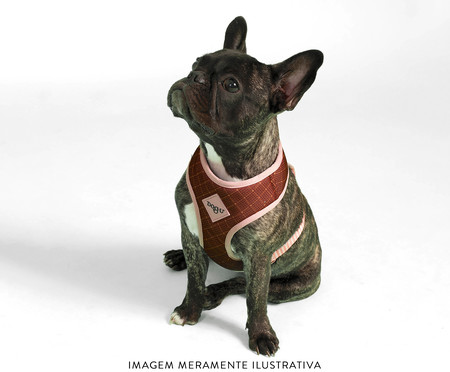 Peitoral Bold para Cachorros Paris - Terracota | WestwingNow