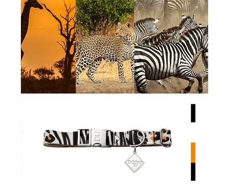 Coleira para Cachorros South Africa - Colorida | WestwingNow