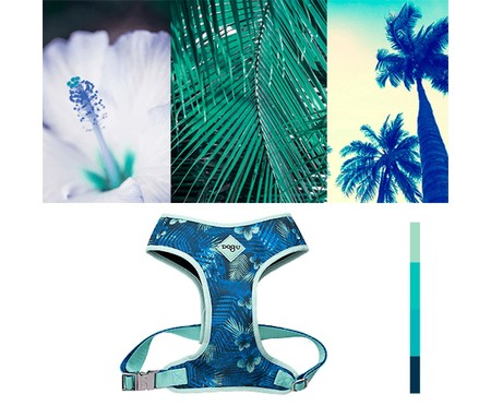 Peitoral Bold para Cachorros Hawaii - Azul   WestwingNow