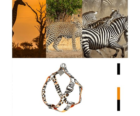 Peitoral para Cachorros South Africa - Colorido | WestwingNow