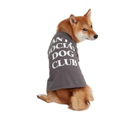 Camiseta para Cachorro Anti Social Dog Club - Cinza   WestwingNow