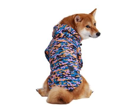 Jaqueta Corta Vento para Cachorro Color Cheetah - Colorida   WestwingNow