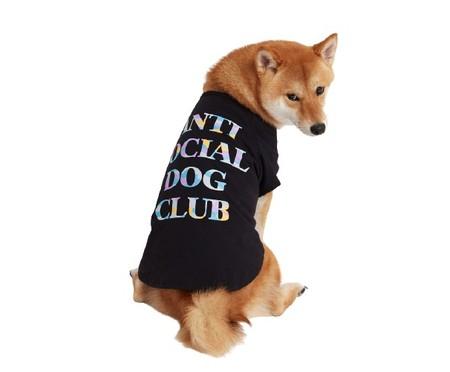 Camiseta para Cachorro Anti Social Dog Club BLK - Preto   WestwingNow