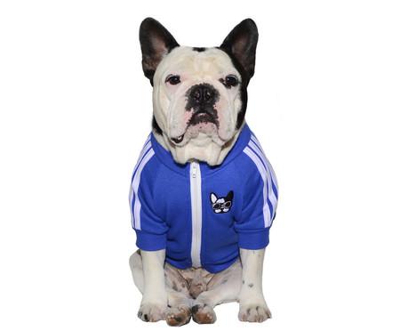 Moletom para Cachorro Sport - Azul | WestwingNow