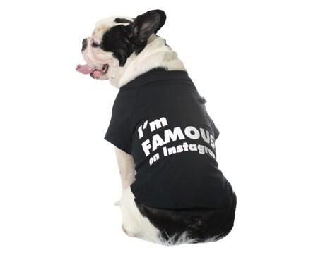 Camiseta para Cachorro Influencer - Preto   WestwingNow