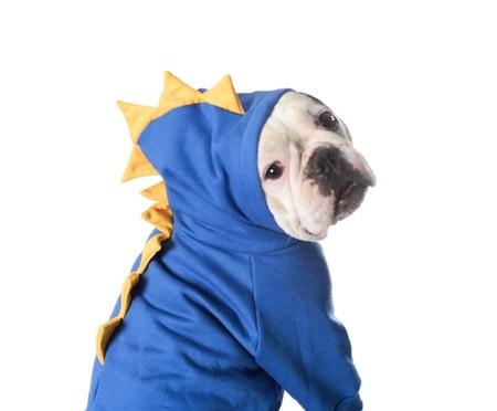 Moletom para Cachorro T-Rex - Azul | WestwingNow