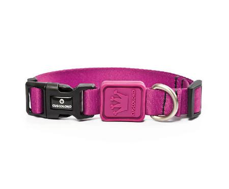 Coleira para Cachorro Euphoria - Púrpura | WestwingNow