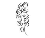 Placa de Madeira Decorativa Eucalipto - Preta | WestwingNow