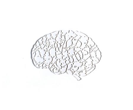 Jogo de Quebra-Cabeça Transparente  Cérebro com Moldura Preta | WestwingNow