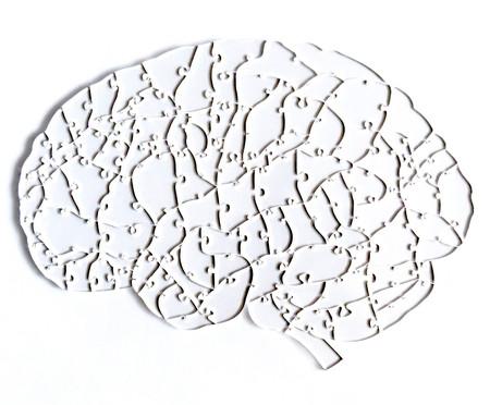 Jogo de Quebra-Cabeça Transparente  Cérebro com Moldura Madeira | WestwingNow