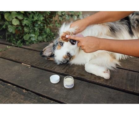 Bálsamo para Patas de Cachorro com Oléo Essencial Lavanda - 25g   WestwingNow